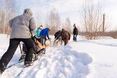 俄国 喀山 2月14日 尾随mushing在雪的西伯利亚爱斯基摩人雪撬队拉扯是在框架外面通过一个冬天的雪撬 库存照片
