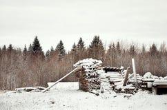 俄国 堆木柴在Kinerma村庄在卡累利阿 2017年11月16日 库存照片