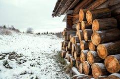 俄国 堆木柴在Kinerma村庄在卡累利阿 2017年11月16日 免版税图库摄影
