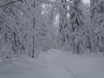 俄国 旅途通过冬天乌拉尔 图库摄影
