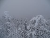 俄国 旅途通过冬天乌拉尔 免版税图库摄影