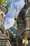 俄罗斯东正教温泉na Krovi,圣彼得堡细节  库存照片