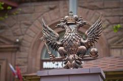 俄罗斯天在莫斯科2017年 图库摄影