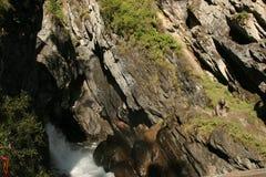 俄罗斯,共和国布里亚特共和国,在上部伸手可及的距离的瀑布Kyngarga河,东Sayan山的岩石的  免版税库存图片