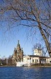 俄罗斯,圣彼得堡、圣皮特圣徒・彼得和保罗大教堂的郊区在春天 库存图片