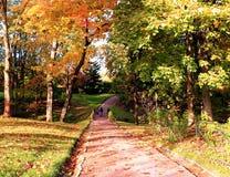 俄罗斯,圣彼德堡,秋天在Gatchina公园 免版税库存照片