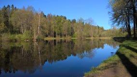 俄罗斯,春天,反射的本质在水中 免版税库存照片