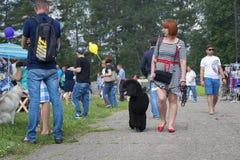 俄罗斯,莫斯科,可以26日2016年,有黑长卷毛狗的妇女,社论 库存照片
