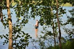俄罗斯,西伯利亚,安加拉河的河岸的桦树树丛 库存照片