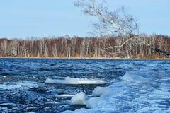俄罗斯,车里雅宾斯克地区 自然纪念碑-湖Uvildy在11月中旬在阴天 免版税库存照片