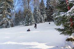 俄罗斯,高原Lago-Naki, Adygeya - 1月28 2017年:孩子在滑雪的一支可膨胀的管滚动下来雪小山 晴朗 免版税图库摄影