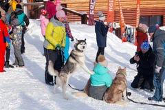 俄罗斯,Sheregesh 2018年 11 17个挡雪板和滑雪者有俏丽的狗的在山区度假村,小逗人喜爱的瑞士山中的牧人小屋,咖啡馆,缆索铁路 免版税库存照片