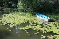 俄罗斯:在池塘的一条木小船长满与荷花和薹 库存图片