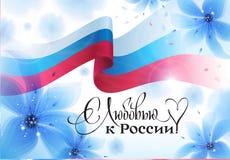 俄罗斯6月12的天日 库存图片