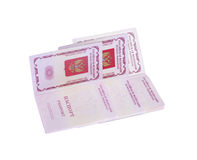 俄语的护照 免版税库存图片