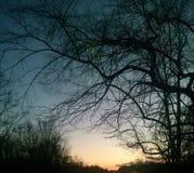 俏丽的天空在晚上 库存图片