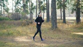 俏丽的女孩在公园跑步并且听到音乐通过耳机在佩带黑田径服的晴朗的秋天天 股票视频