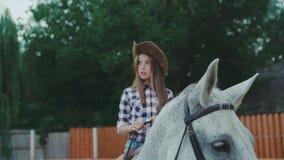 俏丽的女孩坐在4K的友好的马 影视素材