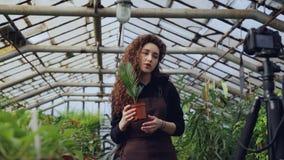 俏丽的女孩普遍的博客作者记录关于植物的录影她的与照相机的社会媒介帐户的在三脚架 年轻 影视素材