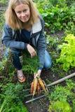 俏丽的女孩用橙色和黄色红萝卜和在gro的一把叉子 库存图片
