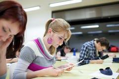 俏丽的女性大学生在教室 免版税库存照片