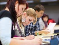 俏丽的女性大学生在教室 免版税库存图片