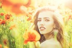 俏丽的妇女或女孩罂粟种子的领域的 免版税库存照片