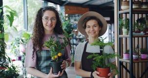 俏丽的少女画象拿着花店微笑的围裙的植物 影视素材