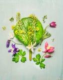 俏丽的庭园花木和五颜六色的花与瓣和叶子在浅绿色的破旧的别致的木背景,顶视图 免版税图库摄影