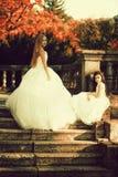 俏丽的新娘葡萄酒照片有女孩的 免版税库存照片