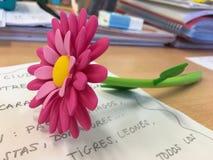 以俏丽的花玫瑰花瓣的形式笔 库存照片