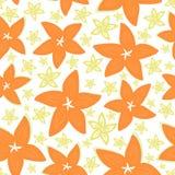 俏丽的雏菊花卉图案无缝的背景 向量例证