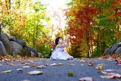 俏丽颜色的秋天 图库摄影