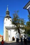 保佑的圣母玛丽亚的大教堂的片段在老塔林,爱沙尼亚 免版税库存照片