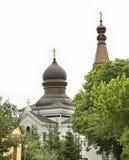 保佑的维尔京的诞生的教会在Wlodawa 波兰 免版税库存图片