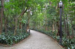 保利斯塔大道的,圣保罗,巴西Trianon公园 免版税库存图片