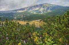 保加利亚山pirin 库存图片