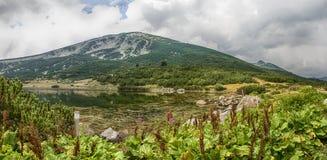 保加利亚山pirin 图库摄影