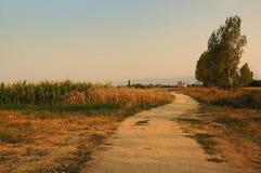 保加利亚村庄 库存照片