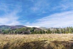 从保加利亚的美好的冬天山风景 库存照片