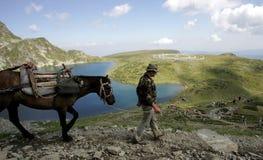 保加利亚Rila山白色团体 免版税库存照片
