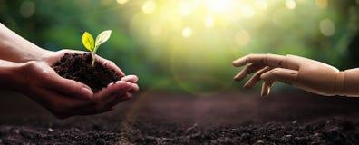 保存地球 绿色行星在您的手上 r 免版税库存照片