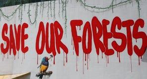 保存我们的森林在BACC 库存图片