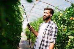 保护他的有化学制品的年轻农夫植物 图库摄影