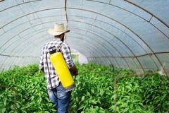 保护他的有化学制品的年轻农夫植物 免版税图库摄影