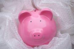 保护您的金钱 免版税库存图片
