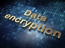 保护概念:在数字式背景的金黄资料加密 免版税库存照片