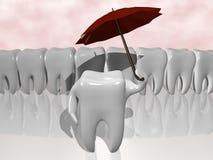 保护牙 库存图片