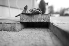 保护的手套的灰度的图象在一块铺的砖的 库存照片
