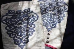 给保护者装袖子由与传统种族的真正的鱼皮肤制成 库存照片